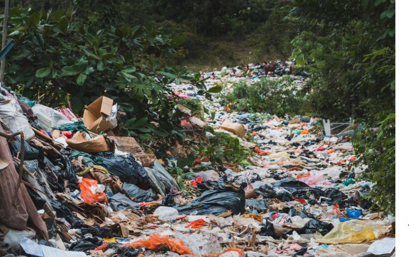 Environmental-Impact-Of-Plastic